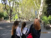 Si arriva al parco Gianicolense con i suoi monumenti e i suoi Busti degli eroi