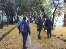 Si entra a Villa Sciarra: splendidi colori d'autunno