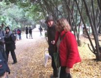 A Villa Sciarra una signora familiarizza con gli studenti e spiega il Ginkgo biloba