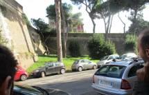 Ma quest'albero sembra davvero rispettare le mura dell'ottavo bastione, anche a rischio del suo svilupparsi …