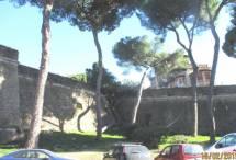 All'ottavo bastione un albero... romantico; devia la sua crescita per non rovinare le mura!