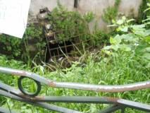 Un'altra  griglia: fanno ancor oggi da scolo delle acque che precipitano da Villa Pamphili